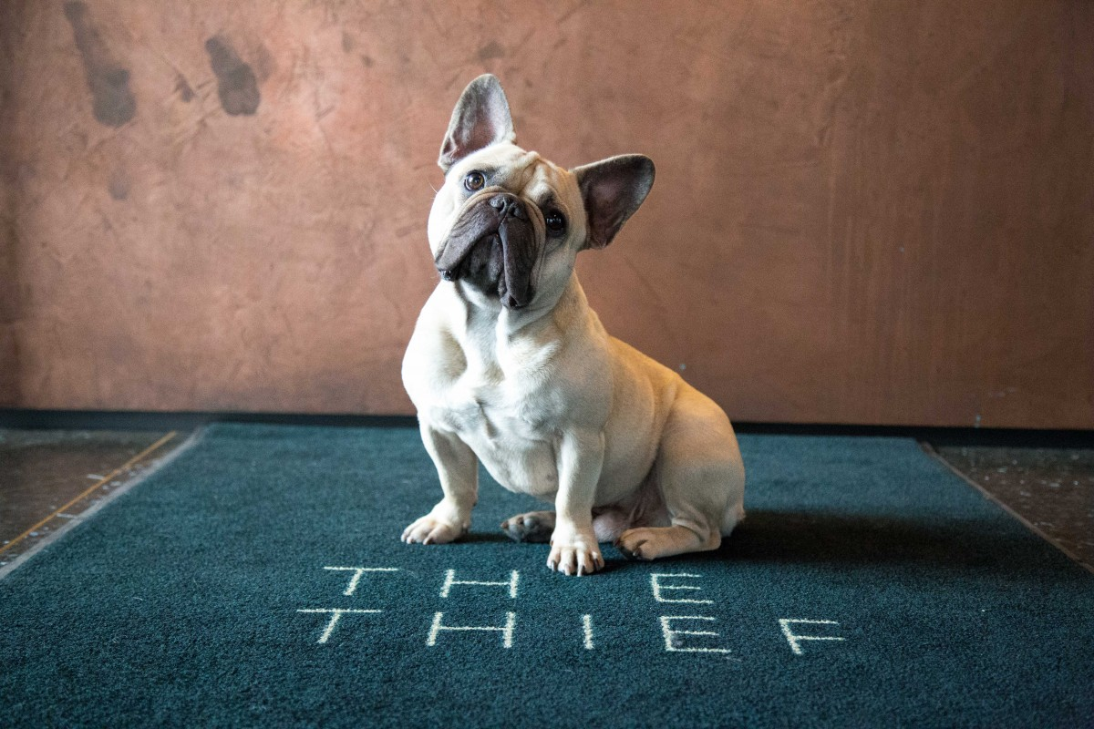 The Thief instagram takeover